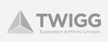 twigg logo